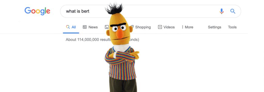 what is BERT